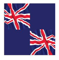 Union-jack-ps-napkins-from-Cosmos-party-boxes